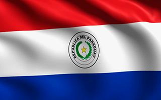 http://southgenetics.com/wp-content/uploads/2015/12/flag-paraguay-320x200.png